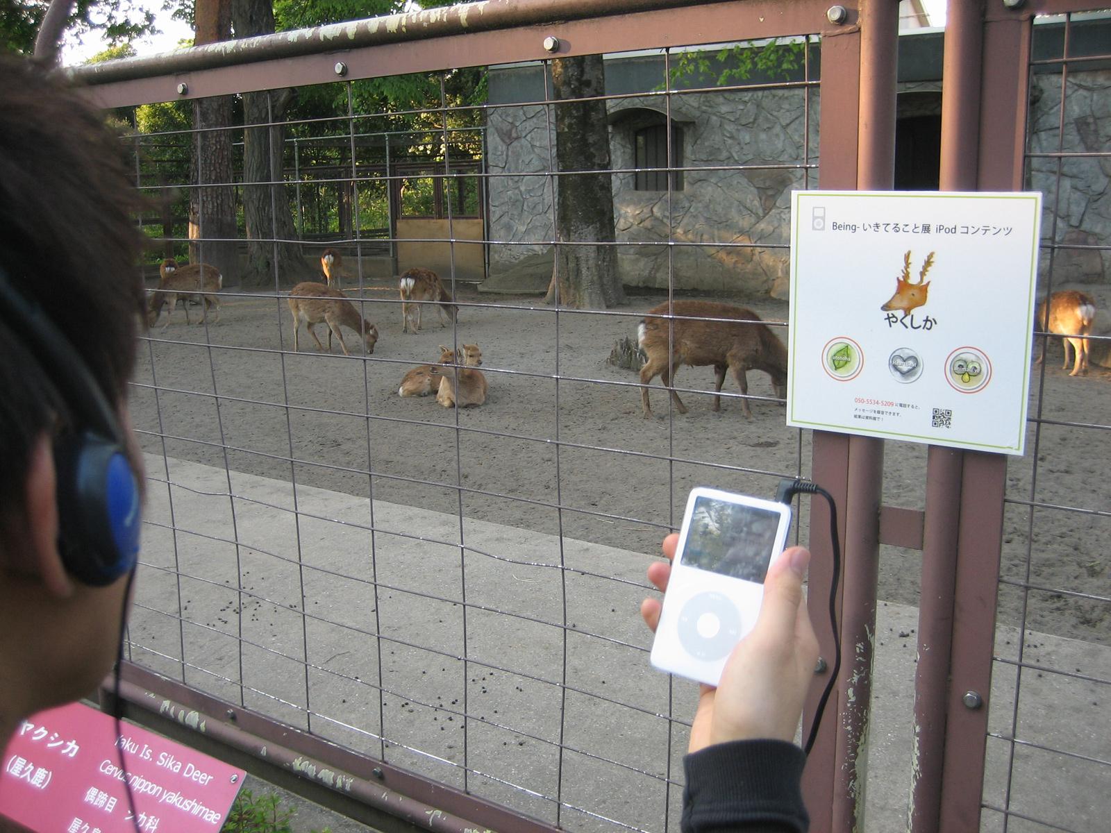 zoo-3